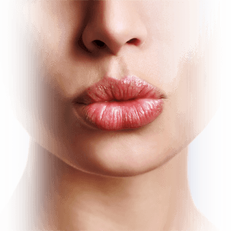 lip enhancement model